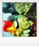 Les ateliers de cuisine végétale